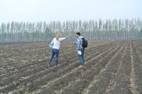 Crop Fields in Heilongjiang, China