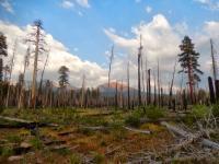 Yosemite's Illilouette Basin