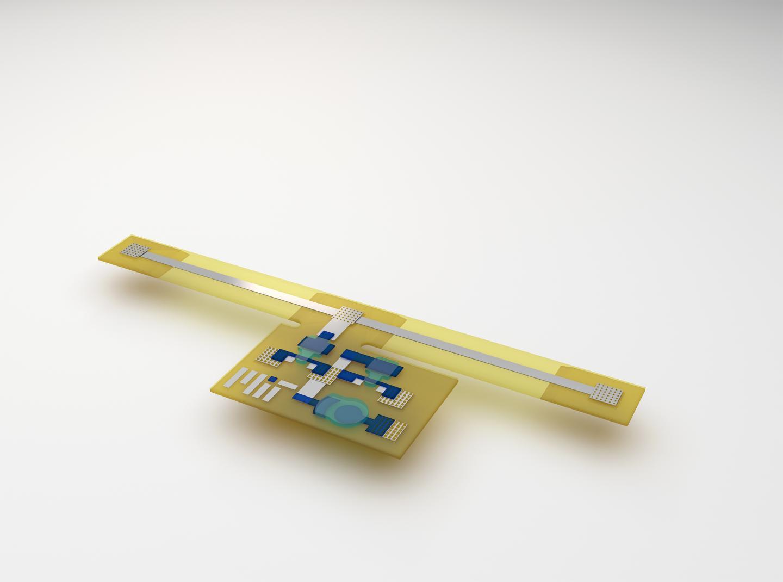 Printable Gold Bug (1 of 2)