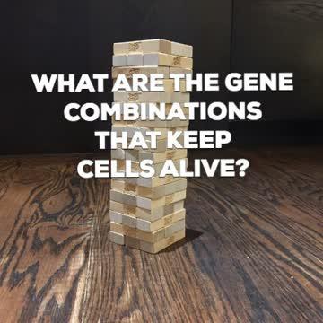 Genome Jenga