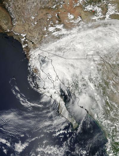 MODIS Image of Odile