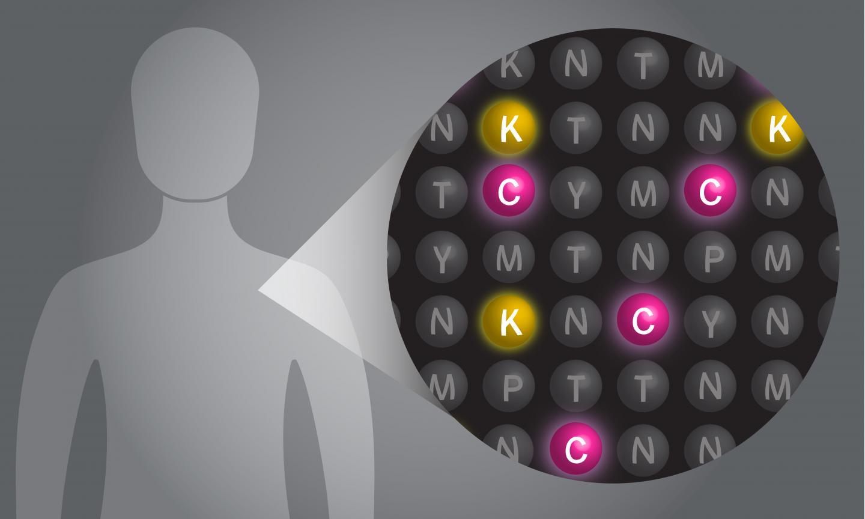 Single Molecule Protein Sequencing