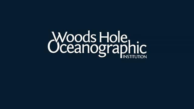 Ocean's Biological Carbon Pump