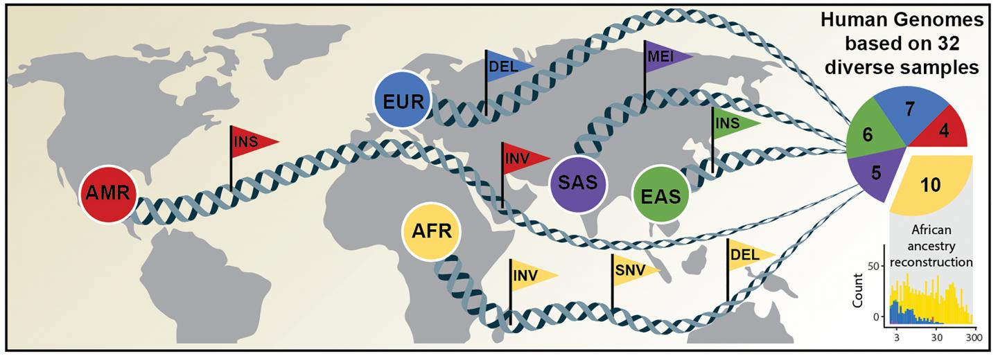Human genomes of diverse ancestry