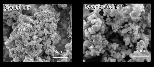 LFP cathode regeneration