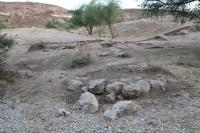 Iron Age Fortifications