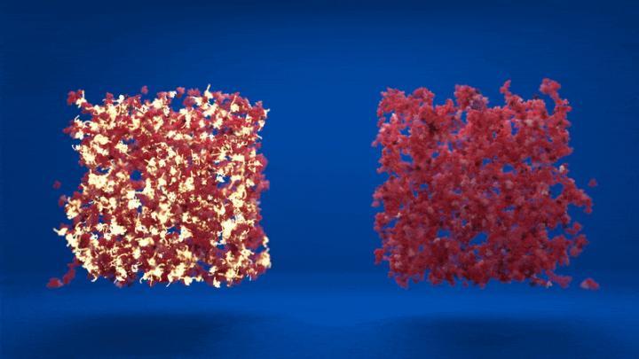 Schematic visualisation of protein networks