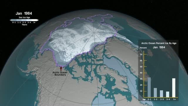 Older Arctic Sea Ice Disappearing
