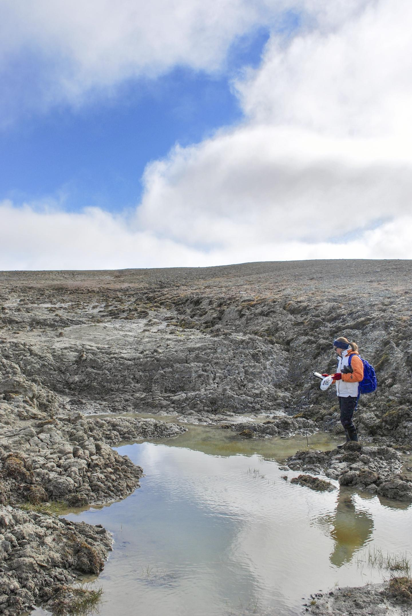 Could Some High Arctic Ponds Hold a Missing (And Significant) Source of Carbon Emissions?
