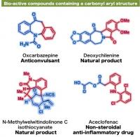 Examples of Bio-Active Compounds Containing a Carbonyl Aryl Structure