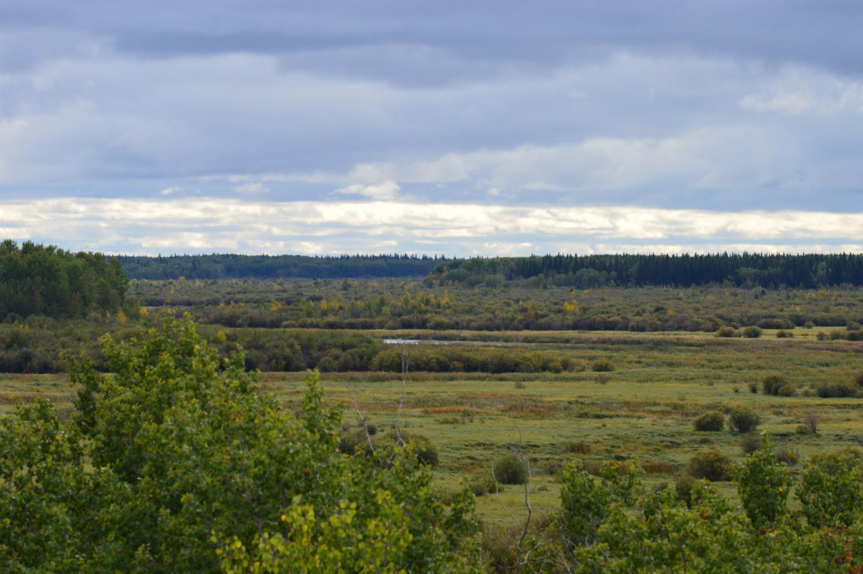 Peace-Athabasca Delta
