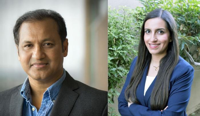 Gautam Das, left, and Shirin Nilizadeh