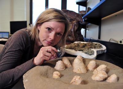 Darla Zelenitsky, University of Calgary