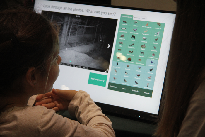Visitor uses the 'Mobile MammalWeb' platform to identify local wildlife at New Scientist Live 2019