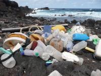 Plastic pollution on coastline of Ascension Island